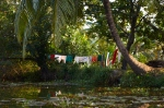 Clothes hang out to dry in the Keralan Backwaters.